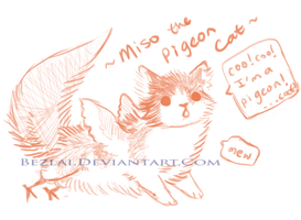 Miso Pigeon Cat by Bezlai