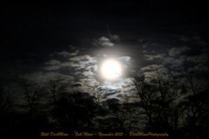 00-FullMoon-November-2014-IMG-0090-WP-Master by darkmoonphoto