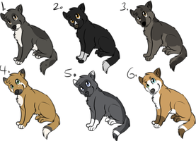 Point dog adopts - closed - by PointAdoptsforyou