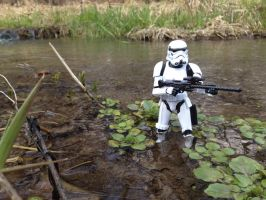 Storm Trooper in swamp by TheLittlestGiant