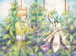 [SM] Berry picking by tshuki