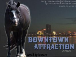 Downtown Attraction by lee-mare