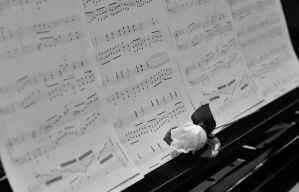Music Sheets by TWOphotography