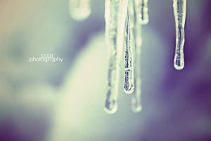 Ice II by sisselPhotography