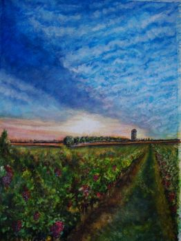 the vineyard in france by jamesconceptsart78
