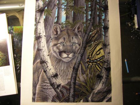 Cougar, Tiger Swallowtail butterfly by Towinckdesigns
