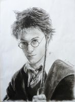 Harry Potter by StokeTheRage