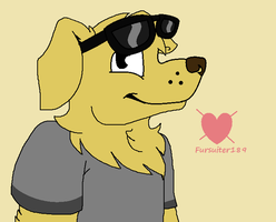 Mr. Peanutbutter(For Radical) by Fursuiter189