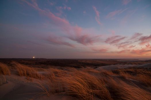 Terschelling sunset II by Argonavis