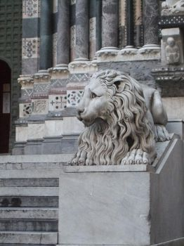 The Lion by EstelAlasse