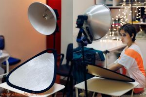 DIY Beauty Dish by AhmedMadhi