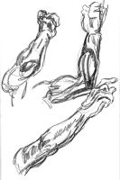 Male arm study by cows-love-clover
