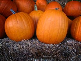 Pumpkins on Hay by thenonhacker