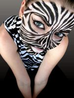 Zebra by Nomilicious