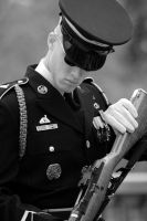 Honor Guard IV by onelook