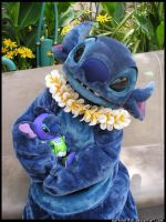 Stitch by surfinstitch