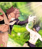 FAIRY TAIL 351 - Taking care of business! by EspadaZero