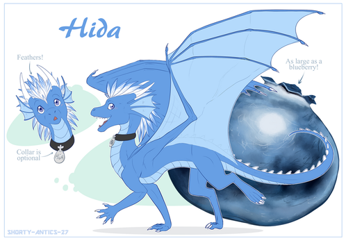 Hida Reference Sheet - Commission by shorty-antics-27