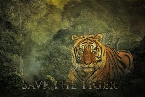 Save the Tiger by greenfeed