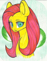 FlutterShy! by DintoDeony