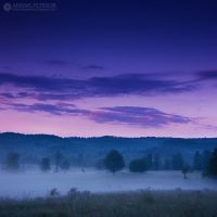 Foggy morning 4 by adypetrisor
