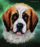 St Bernard by Greykitty