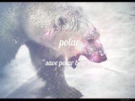 Save the polar bears by LSPGFX