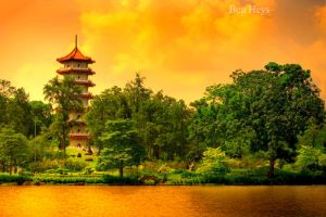 Chinese pagoda by sifu
