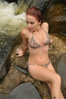 Cheetah - leopard bikini on rocks 1 by wildplaces