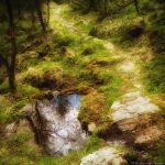 The Reflecting Path by MarcoHeisler