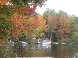 471 fall color on Burnt Meadow Pond by crazygardener