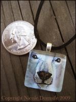 Arctic Gaze Glass Pendant by thornwolf