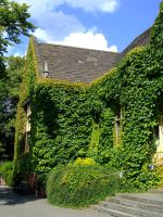 Kettering library goning green by masternoname
