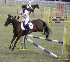 STOCK Showjumping 478 by aussiegal7