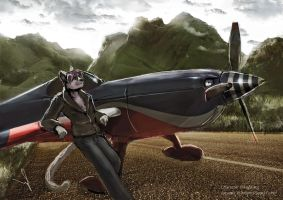 Huskitty Extra 330 sc commission by TicoabyGrey