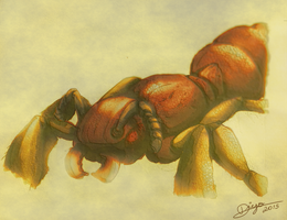 Ant Concept by Diego-Araujo-Artwork