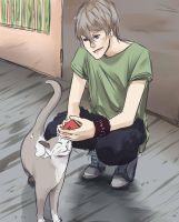 Playing with the cat by Michikoreto
