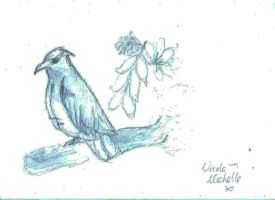 Birdy doodle by NicolaMichelle