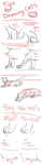 Drawing Cats Tips by Hiedidog