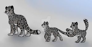 Snow Leopards by momodory09