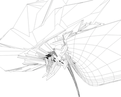 Wireframe C4D by aanoi