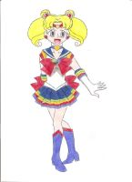 Contest: Sailor Combo by animequeen20012003