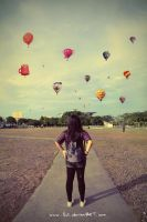 hot air balloon festival by lisz