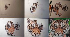 little tiger wip by saraPortrait