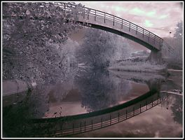 One or two IR by jmorante77