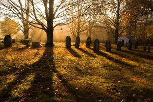 Morning at South Cemetery by muffet1
