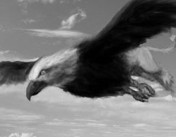 Griffin by kendmd