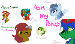 Ask us anything- mlp ocs by taliawolf