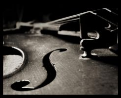 Violon 1 by clairwitch