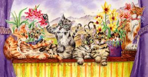 Purrime Purrsition by moggies